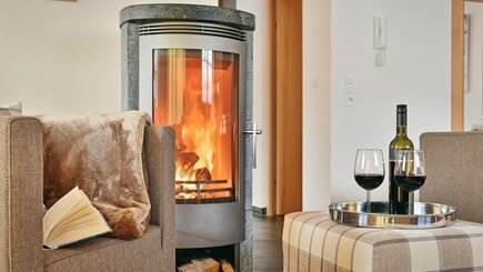 Living room wood burner